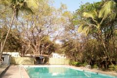 Swimming Pool3
